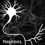 Neurons for WP7: TED Talks in open source sauce